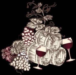 vin-nature